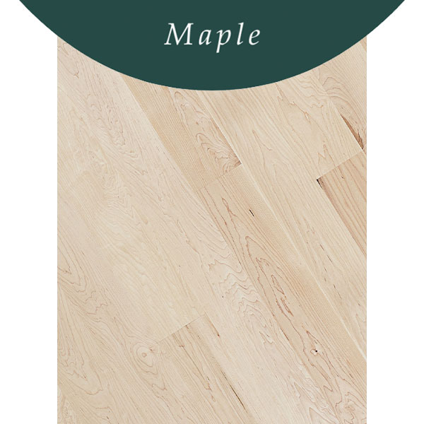 Standard Flooring Saroyan Flooring Species Maple 1